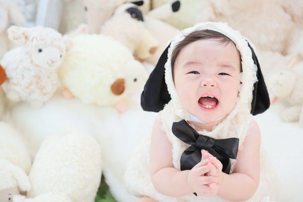 大好評☆彡ふわもこひつじ撮影会 ご予約受付中